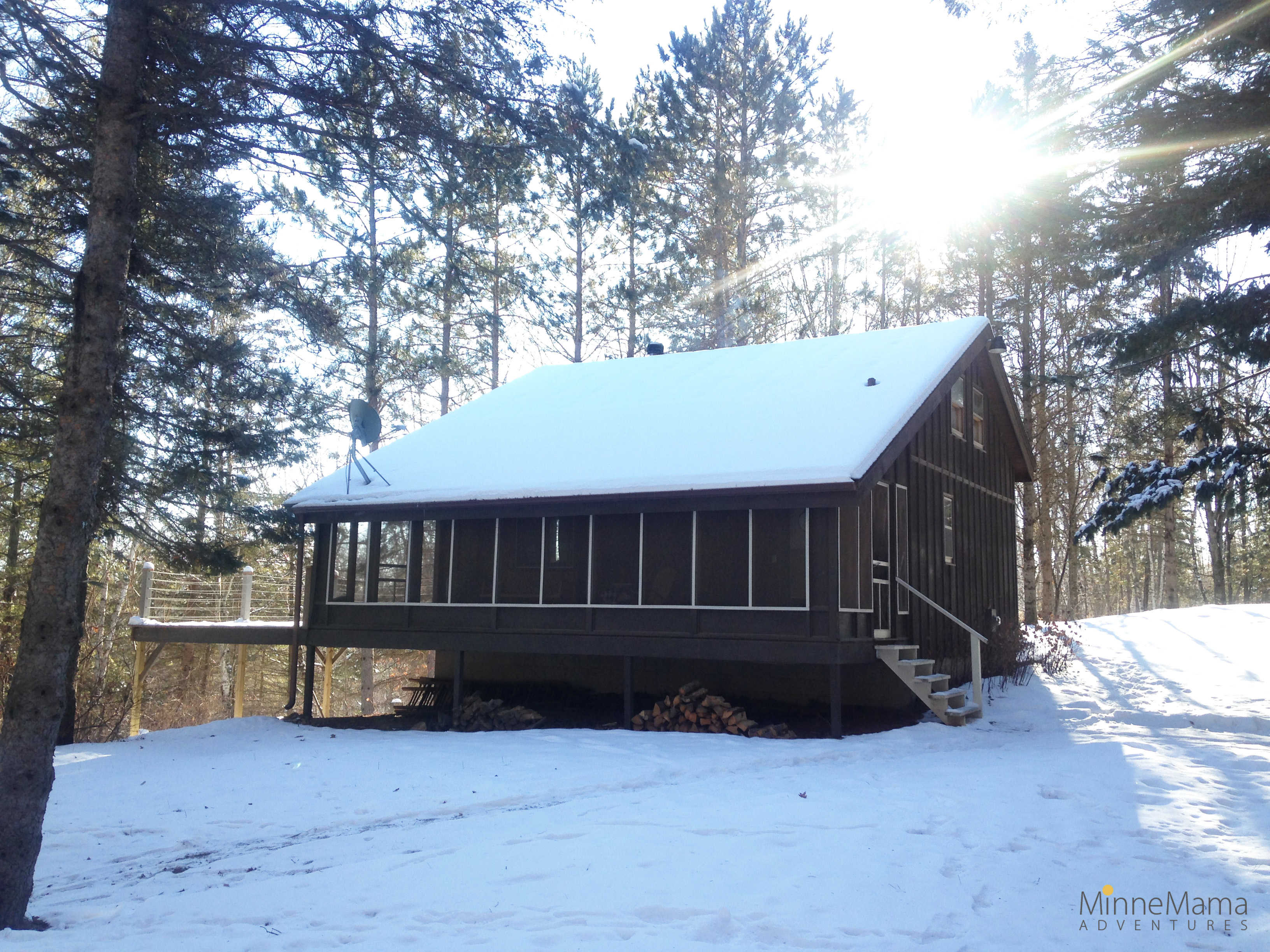 Log cabin in the woods winter - 6